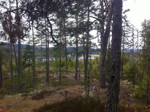 Utsikt Häxberget