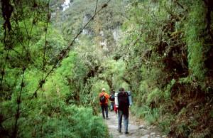 Camino-inca-dia3-c02